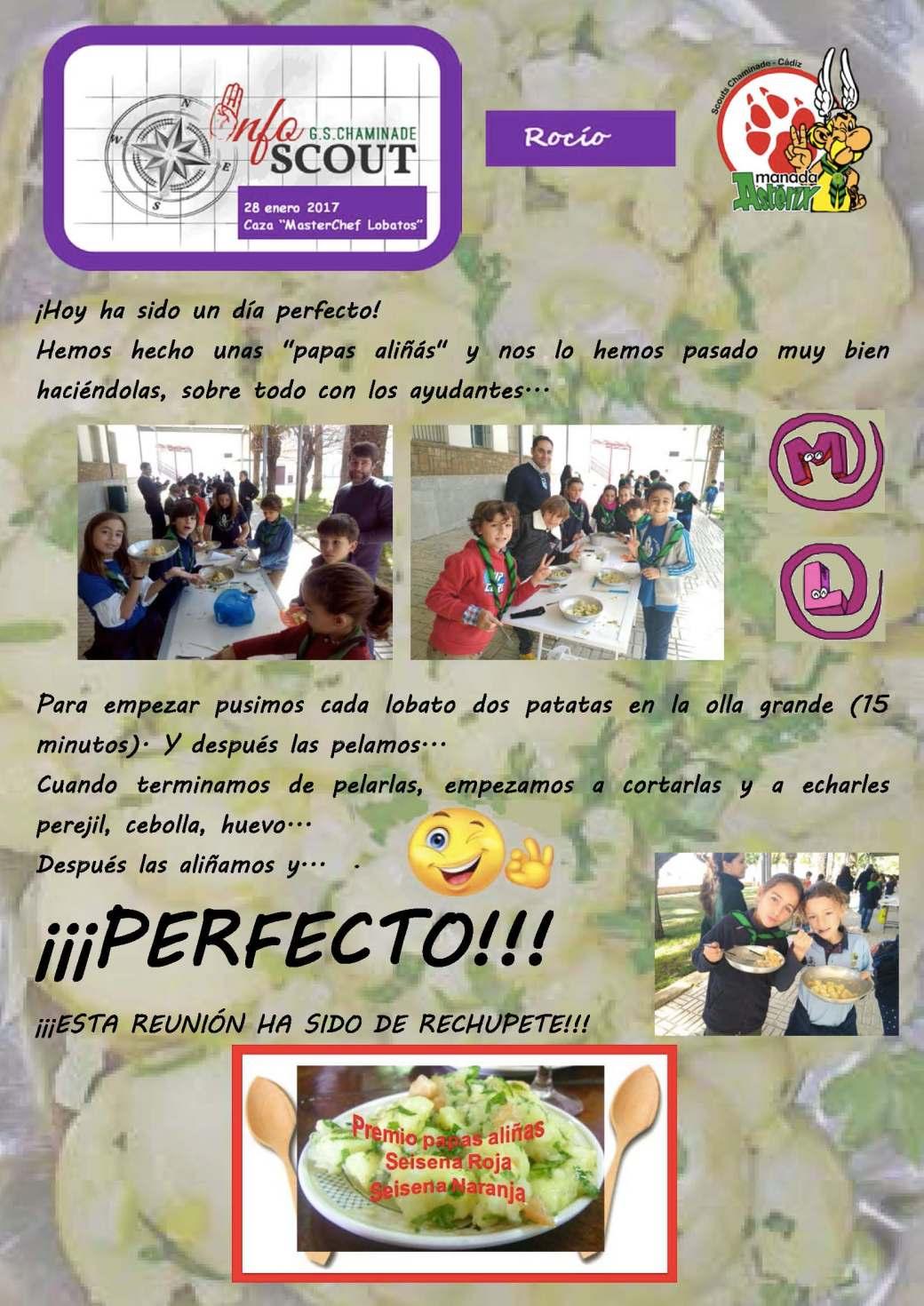 cronica-rocio-28-01-17