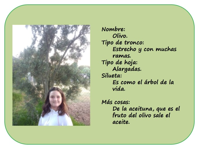IRENE-y-sus-arboles5