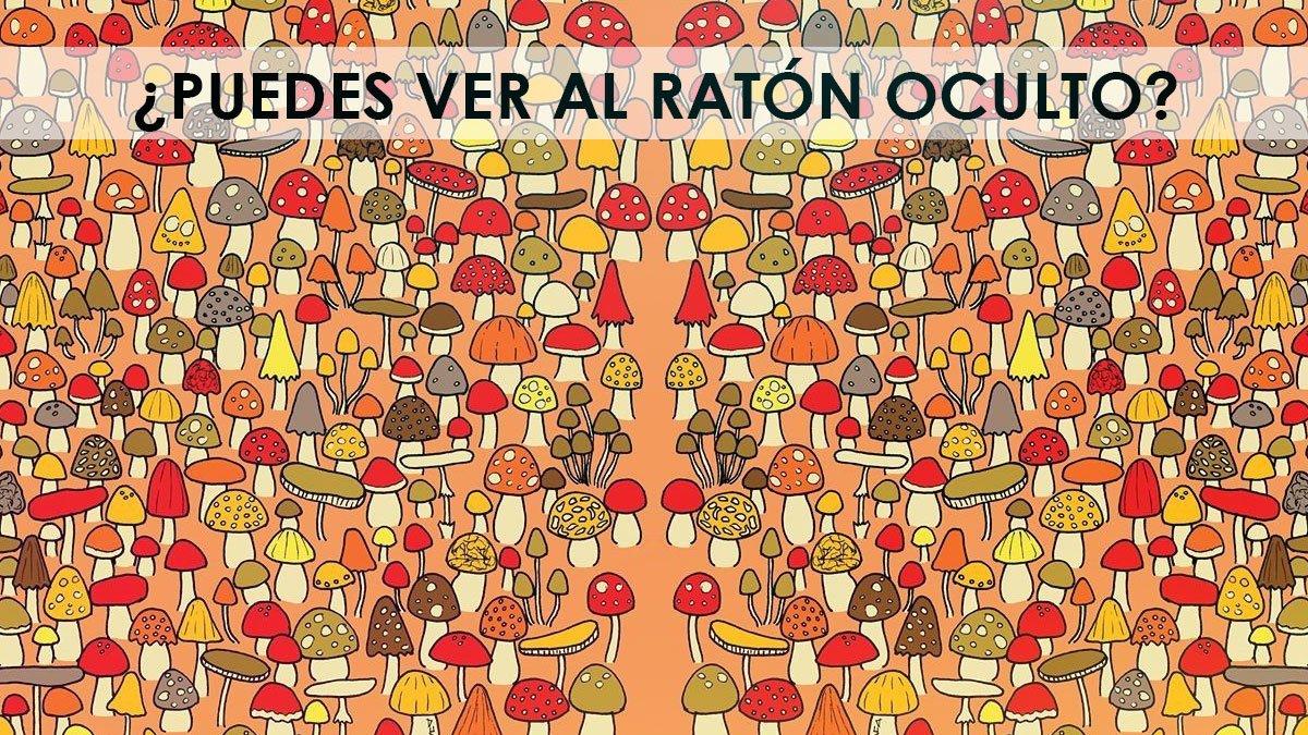 Reto-visual